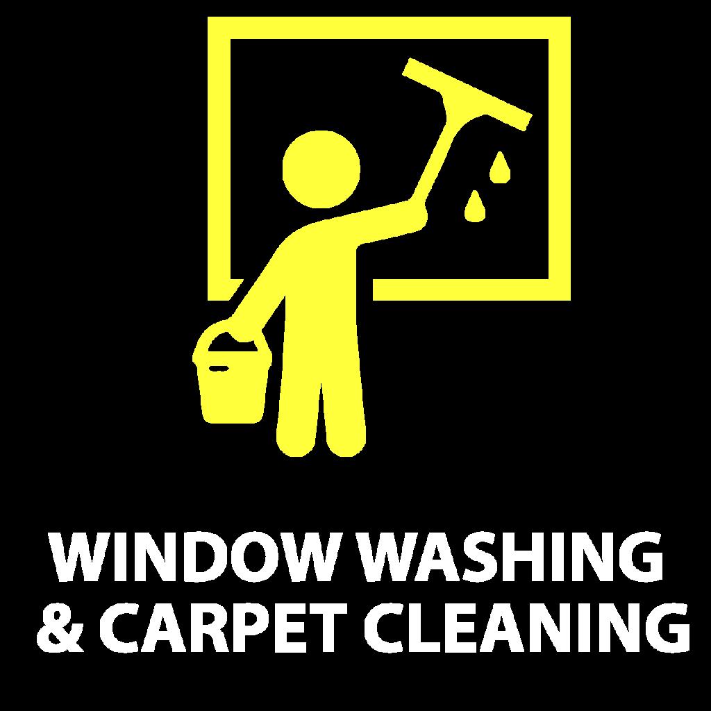 Window Washing Carpet Cleanig